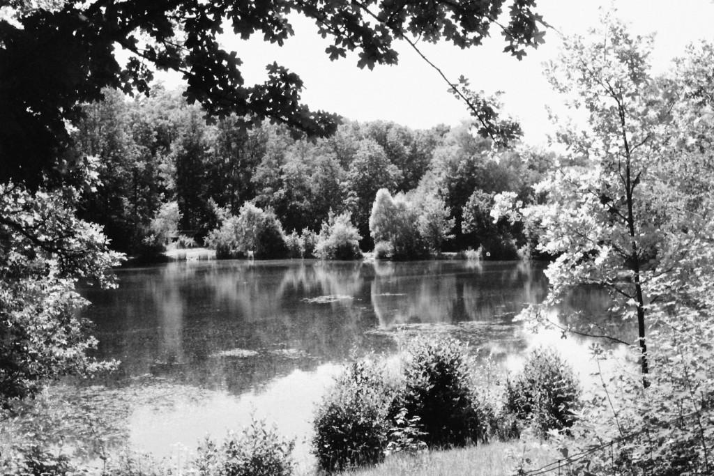 Bürgerseen